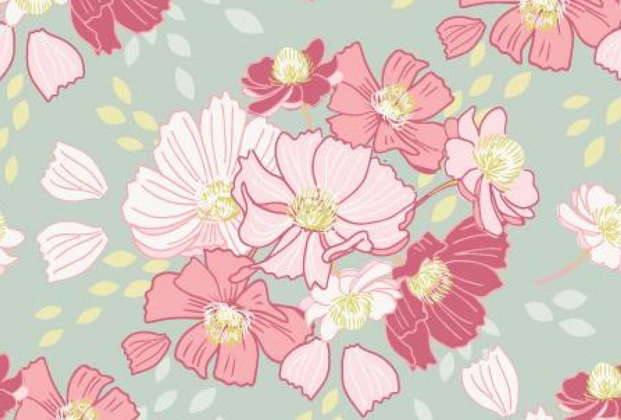 Cosmos Flowers - student project