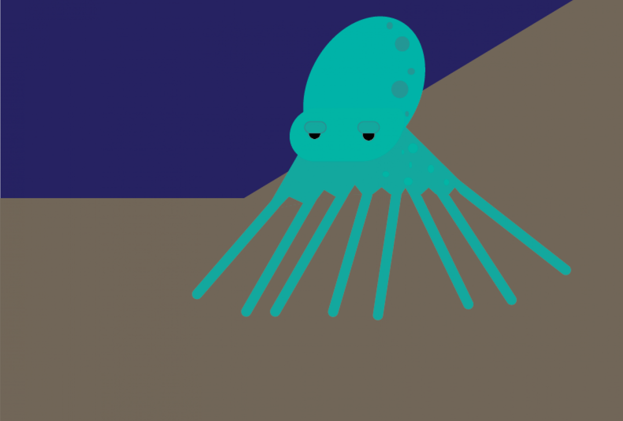 Octopus - First Lesson - student project