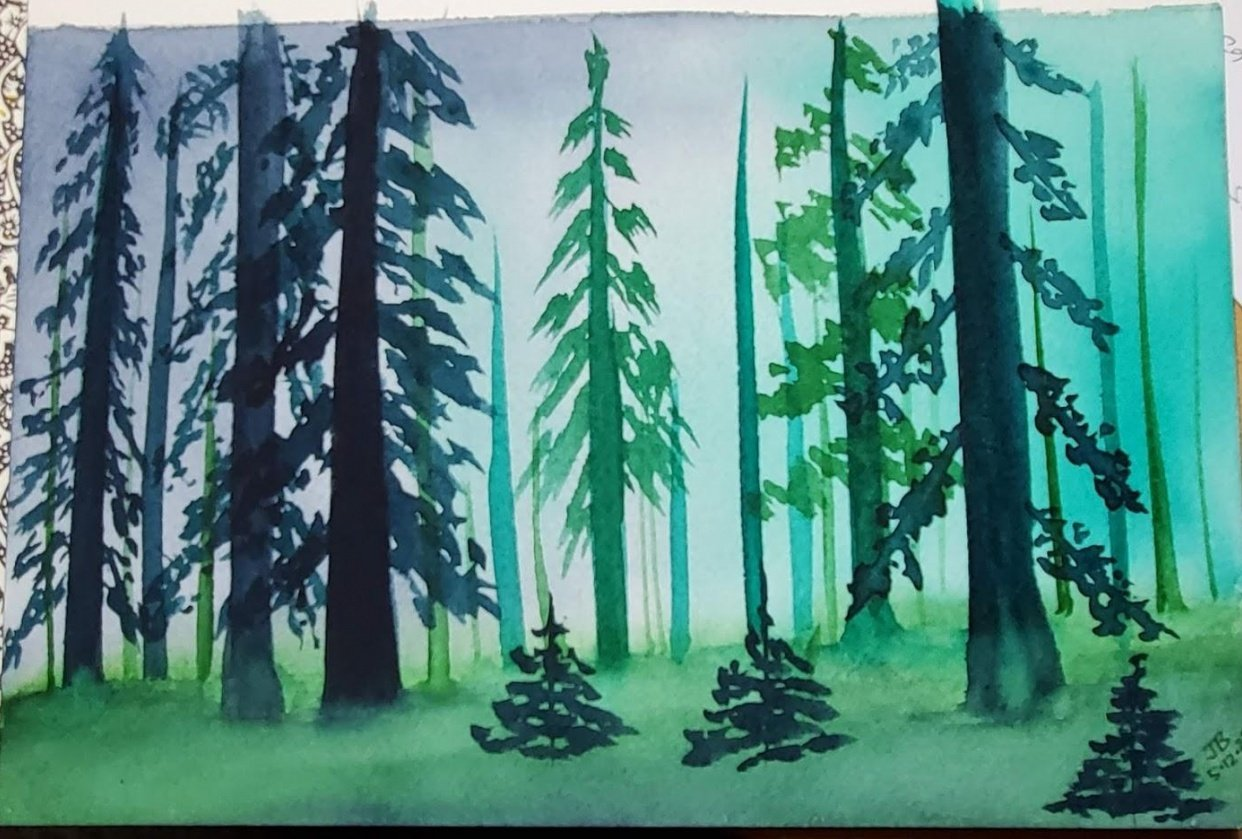 Misty Forest - student project