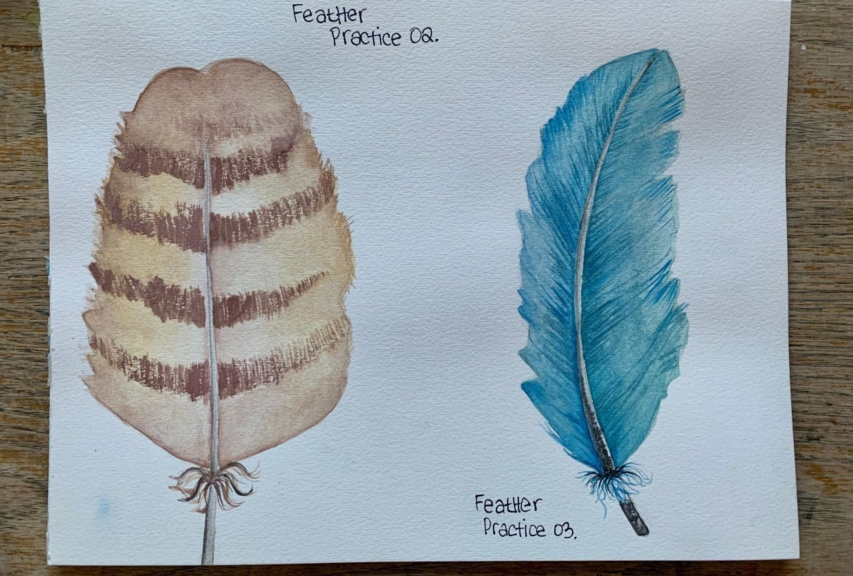 Feather Practice - student project