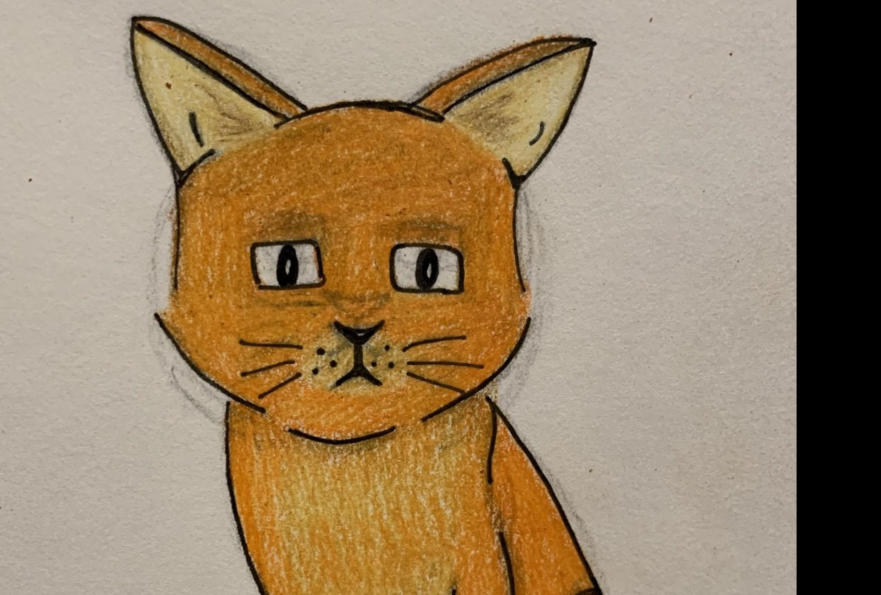 Stylistic Cat - student project