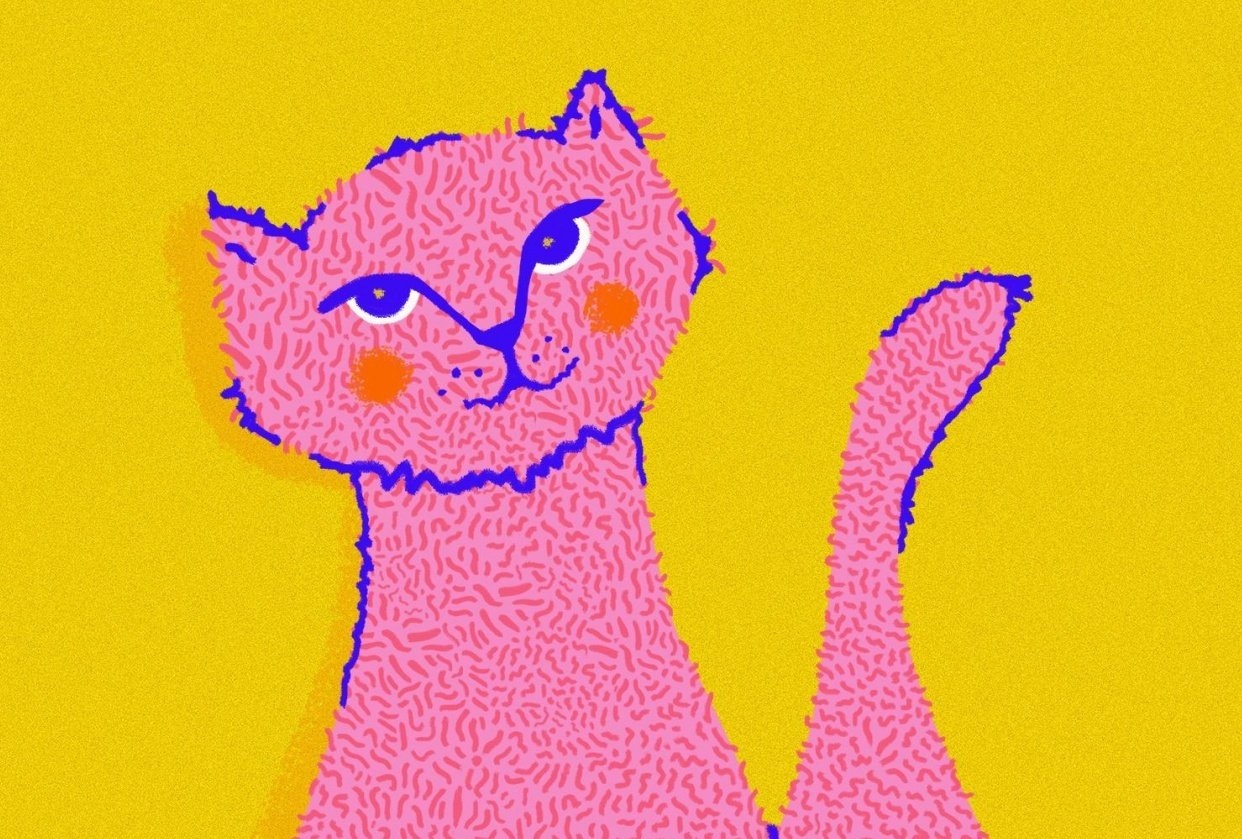 Miau Cat - student project