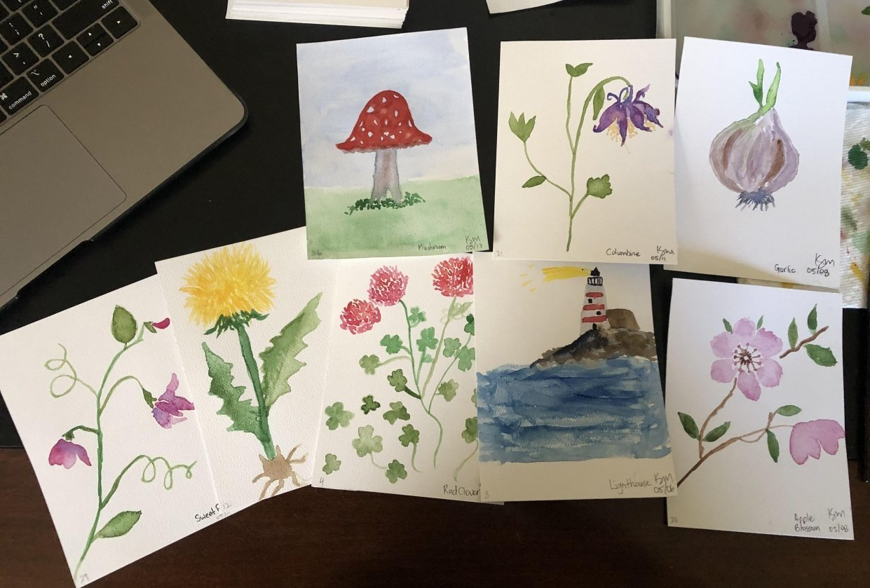 100-Day Challenge - student project