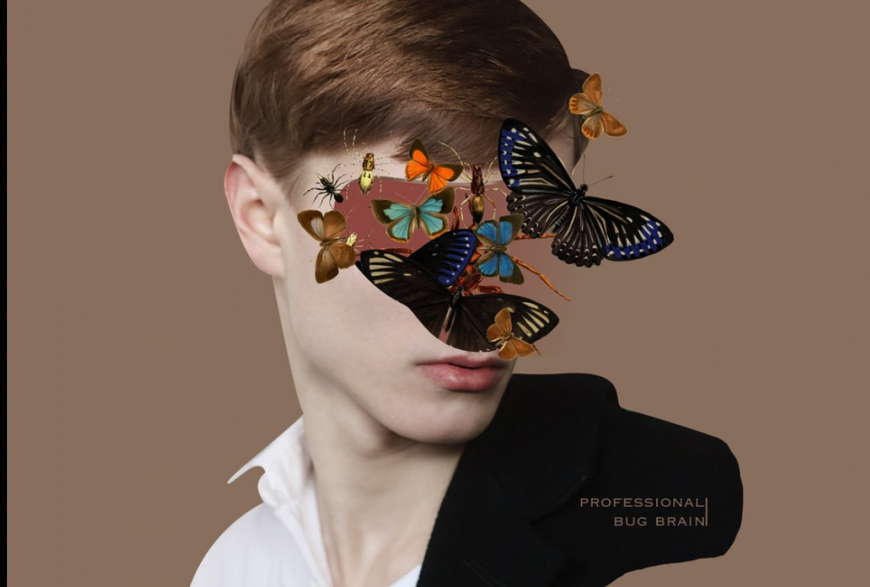 Collages - student project