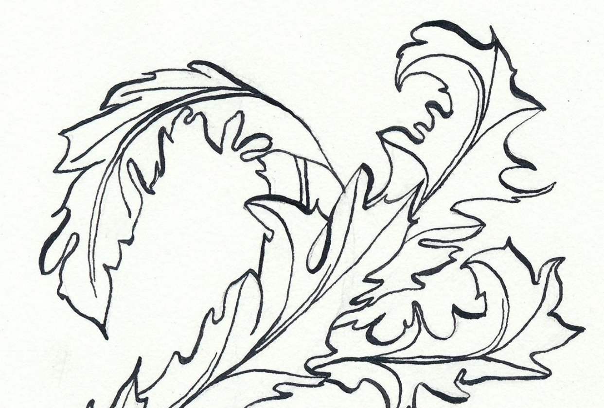Acanthus scroll - student project