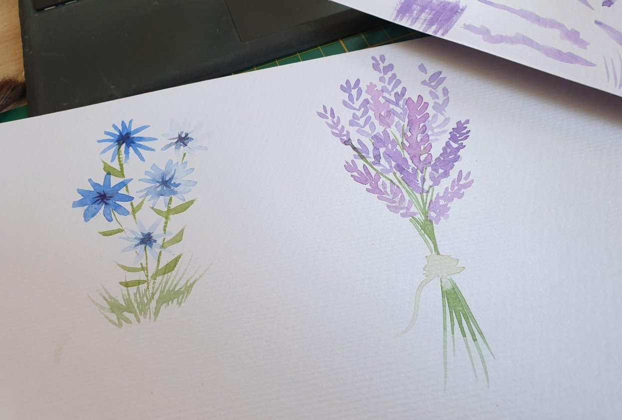 Quick start guide to watercolors - student project