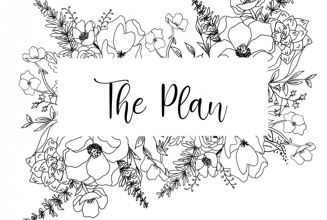 The Plan - student project
