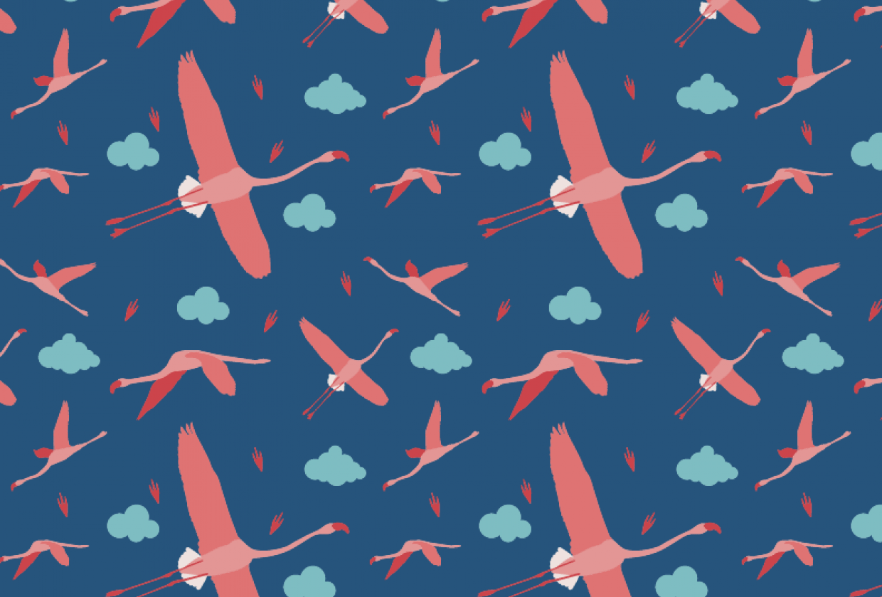 flamingos - student project