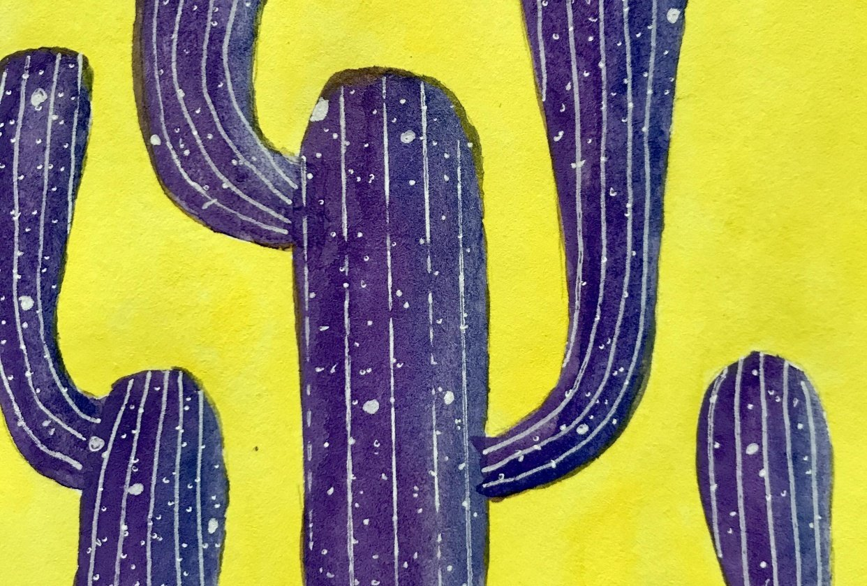 colorful cacti - student project