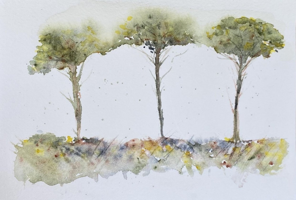 Spring Trees - student project