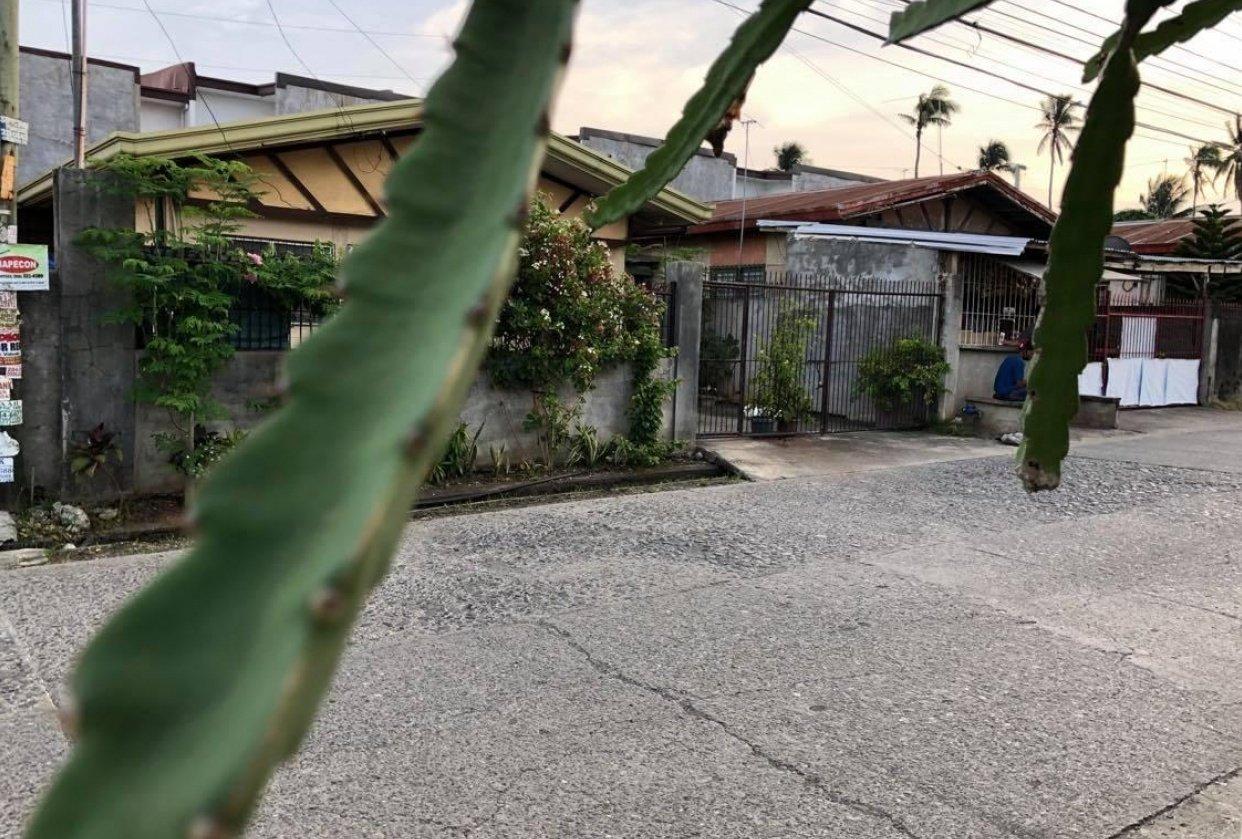 Street photos - student project