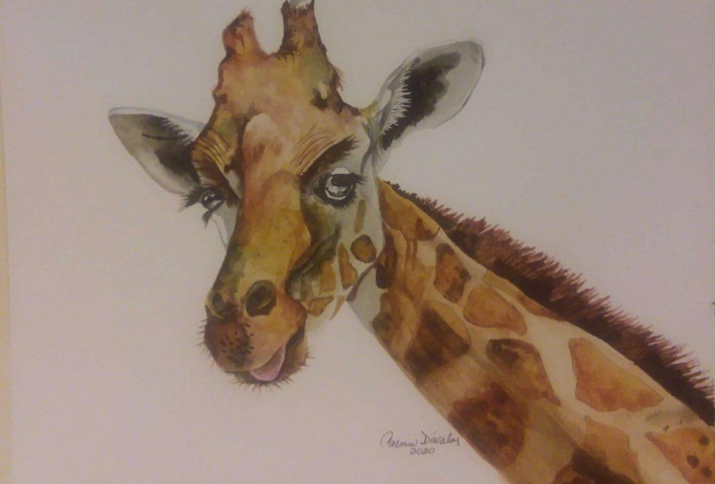 Giraffe. Carmen Davalos - student project