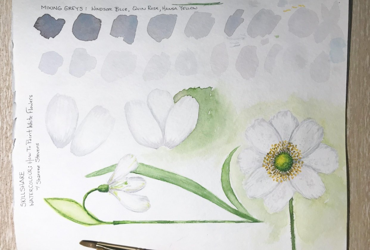 Mixing Grays to Paint White Flowers - student project
