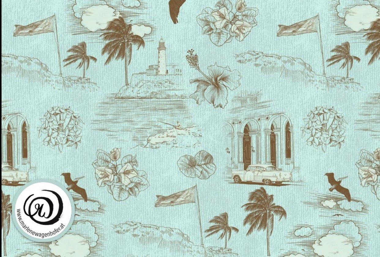 Havana Dreams - Toile de Cuba - student project