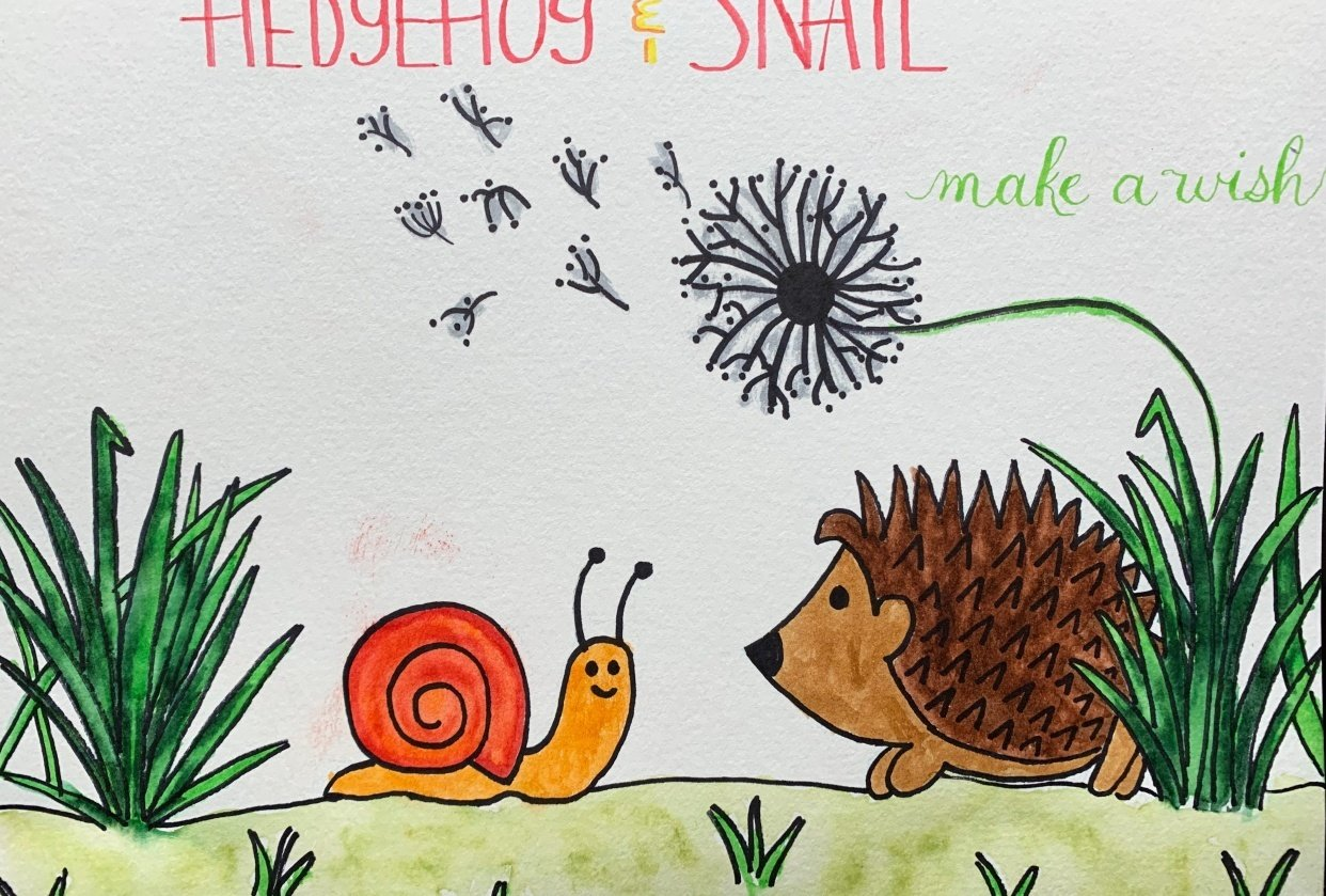 Hedgehog & Snail - student project