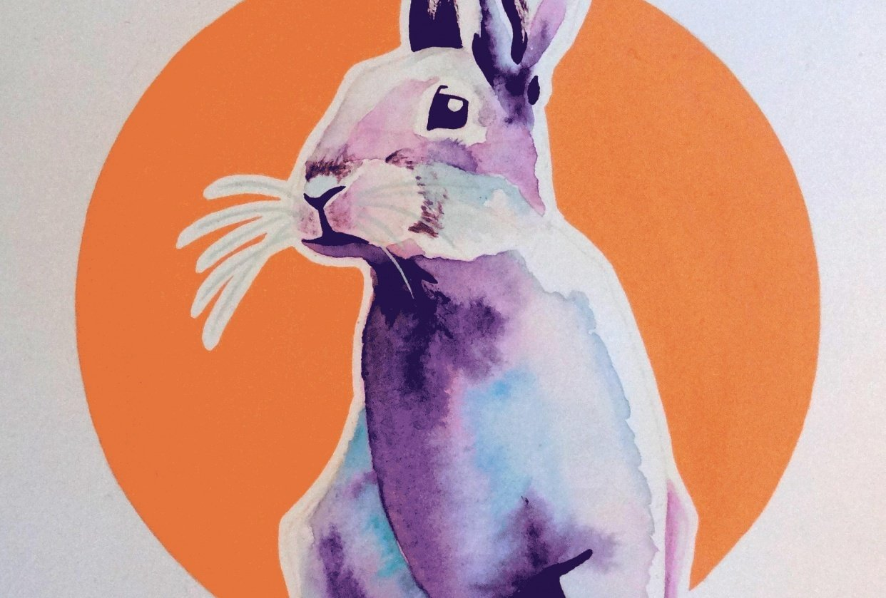Colorsplash Animals :) - student project