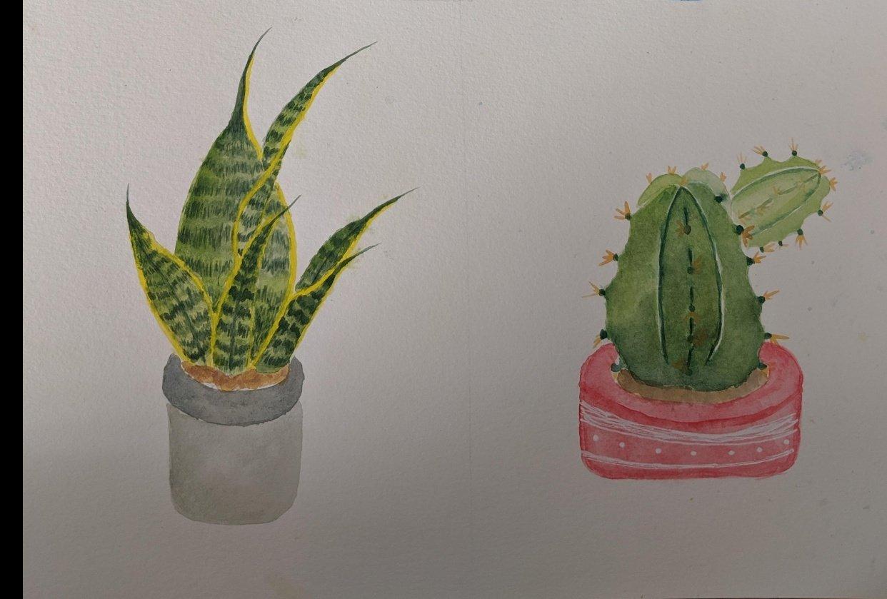 Plants <3 - student project