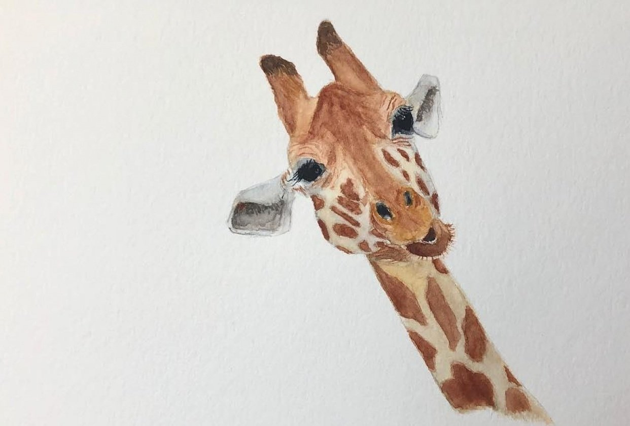 Giraffe - own reference - student project