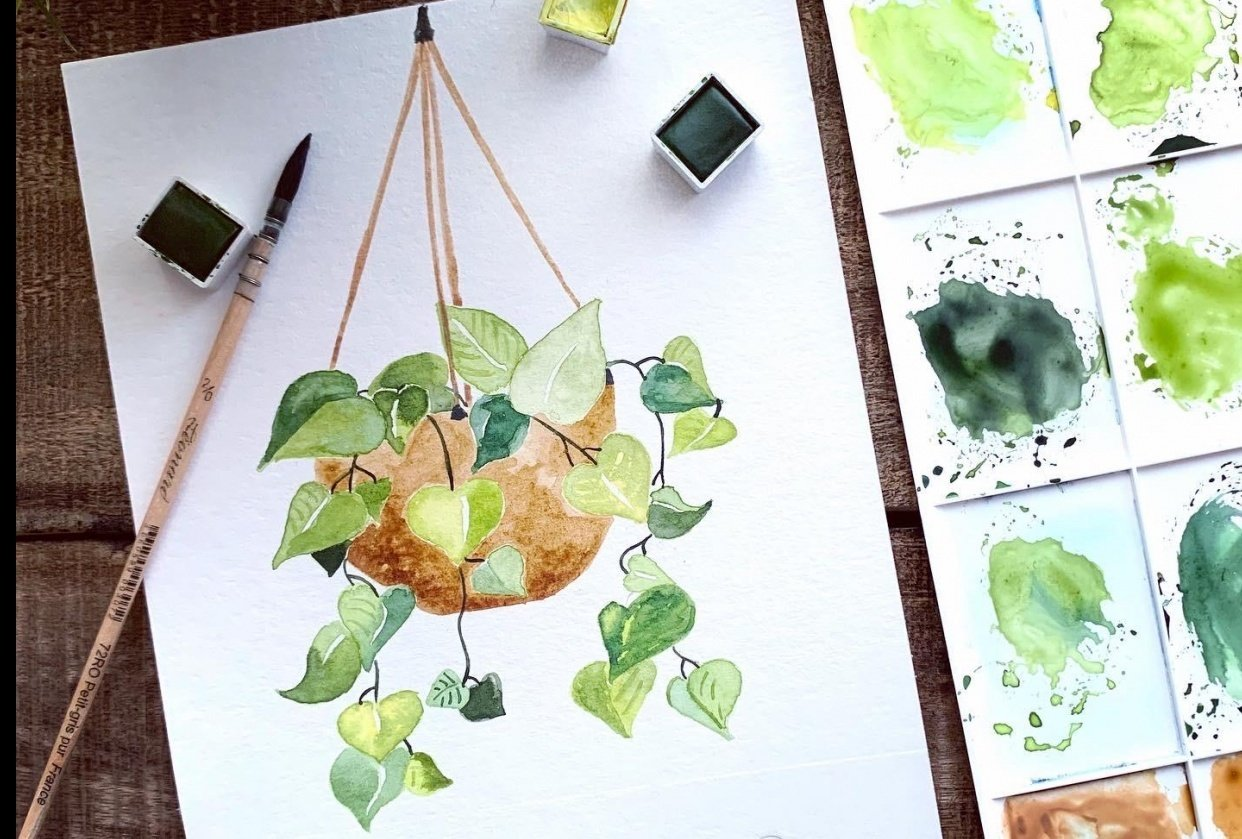 Pothos Plant - student project