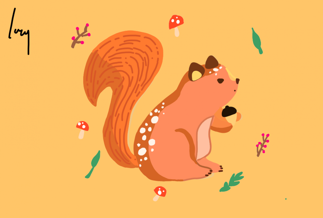 Squirrel - student project