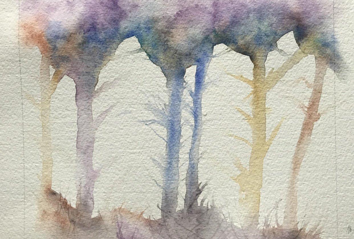My rainbow trees - student project