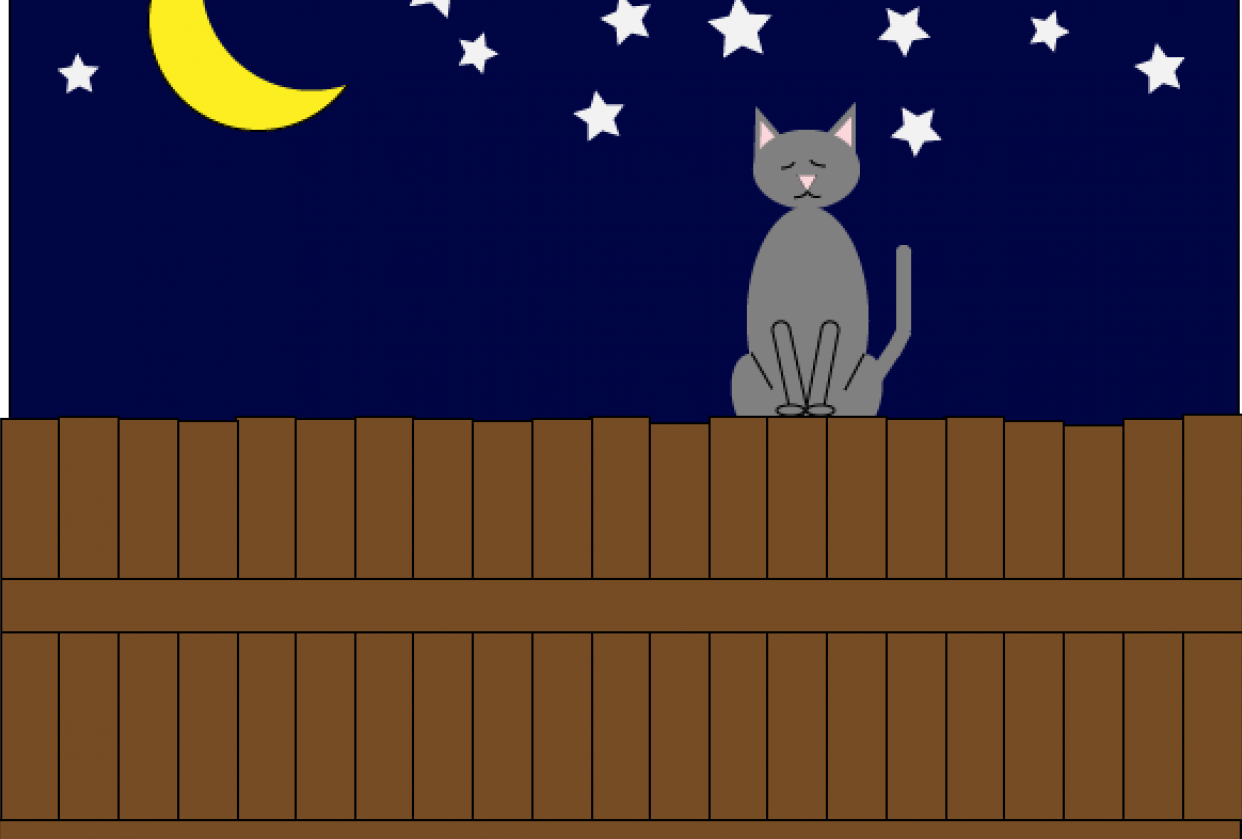 Cat on the Fence - student project