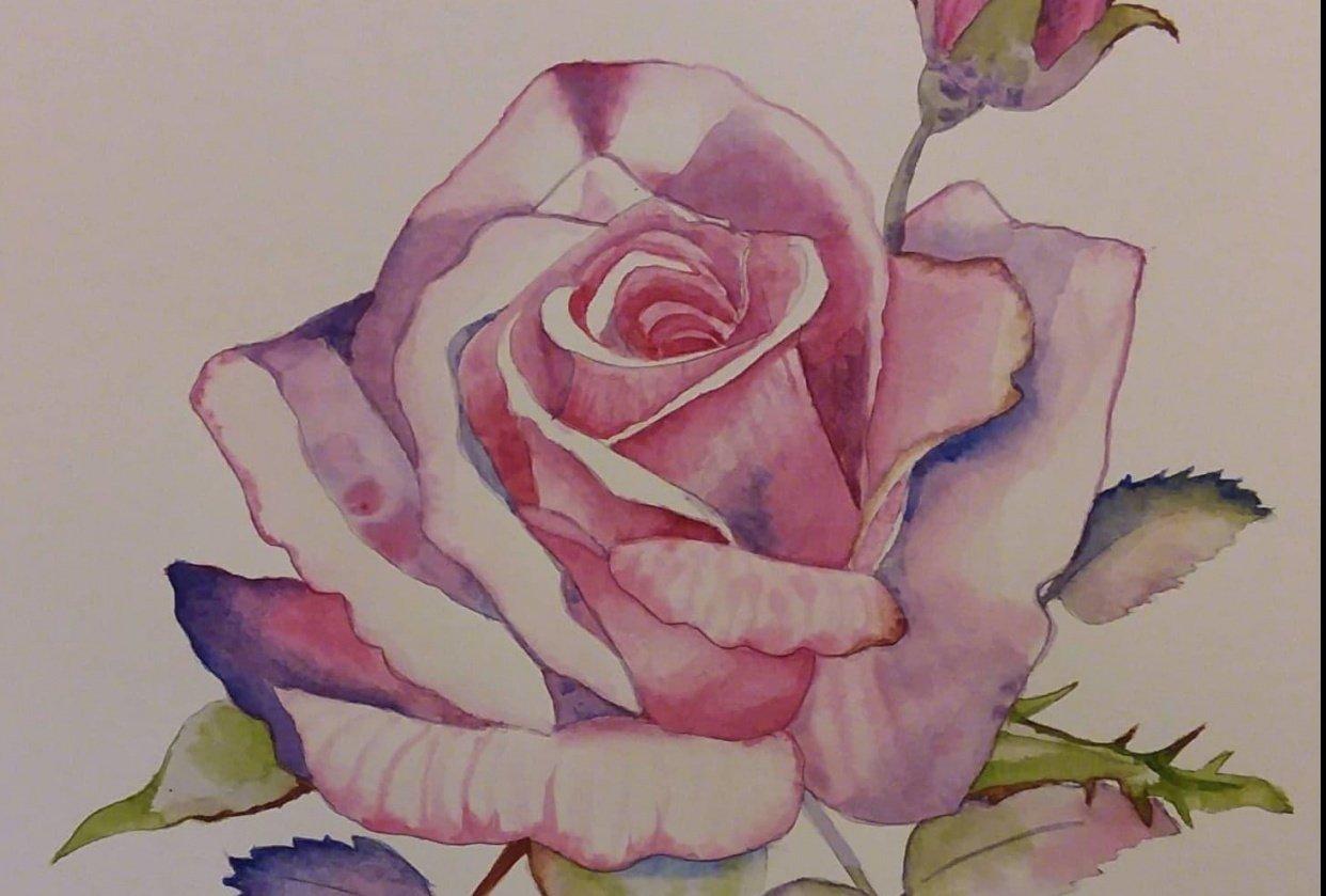 Rose. Carmen Davalos - student project