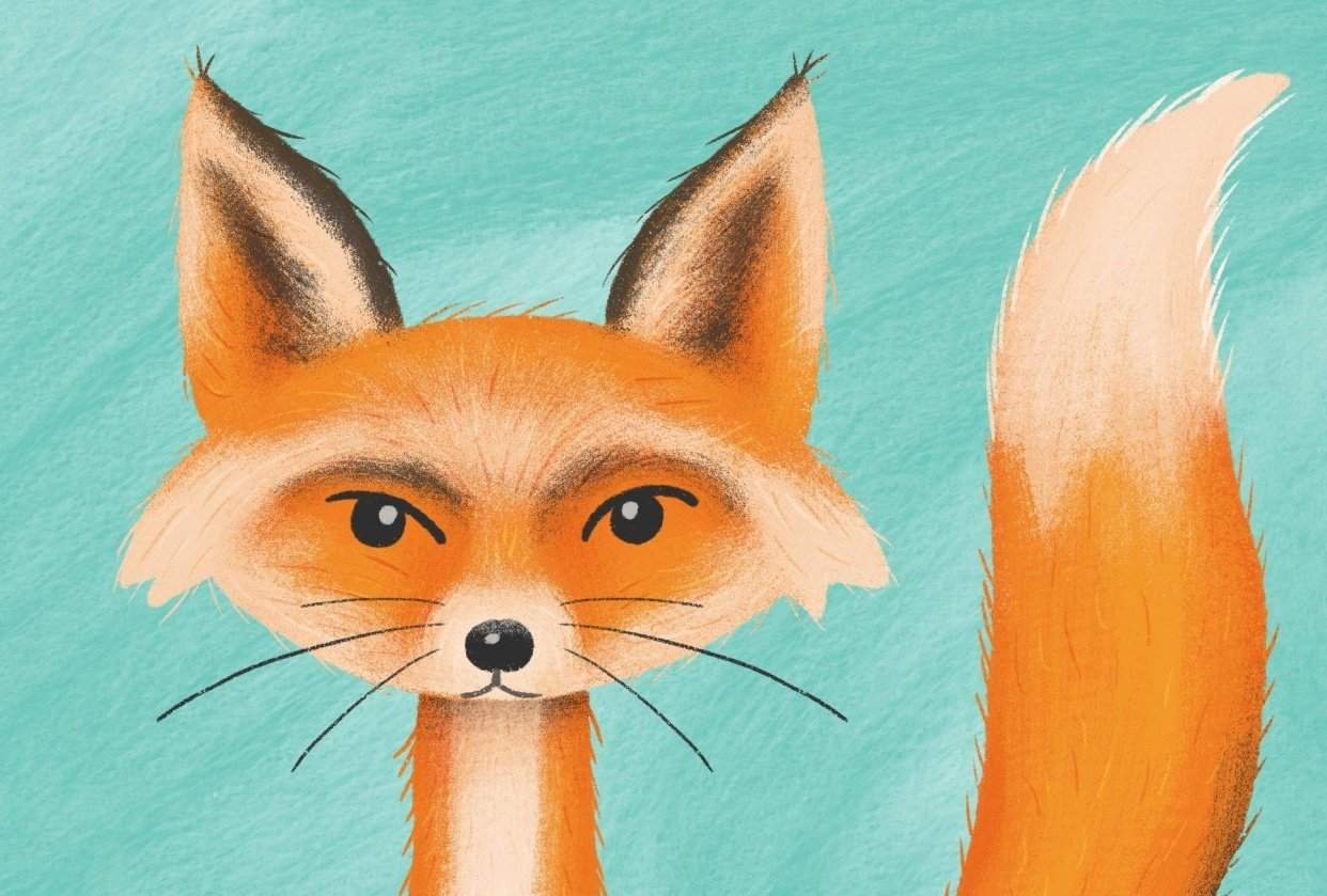 Sly Fox - student project