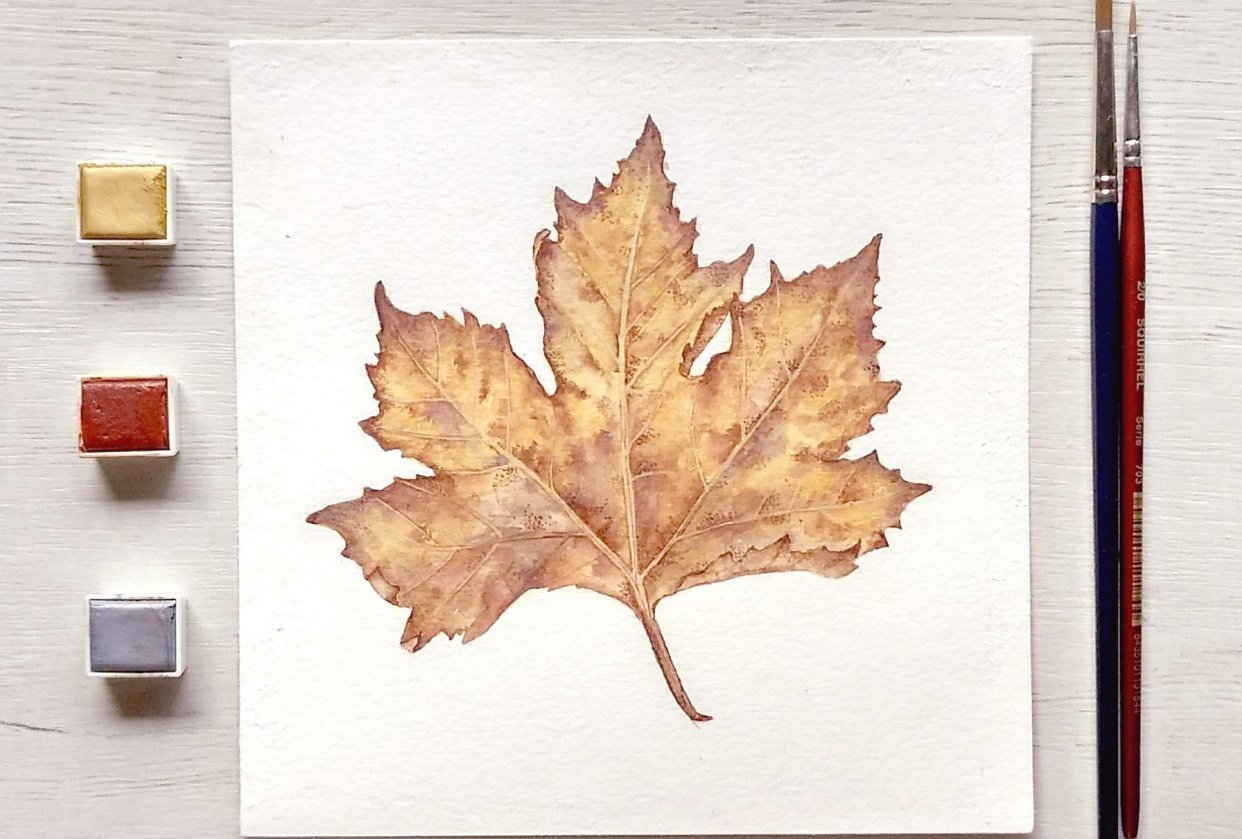 Maple leaf - student project