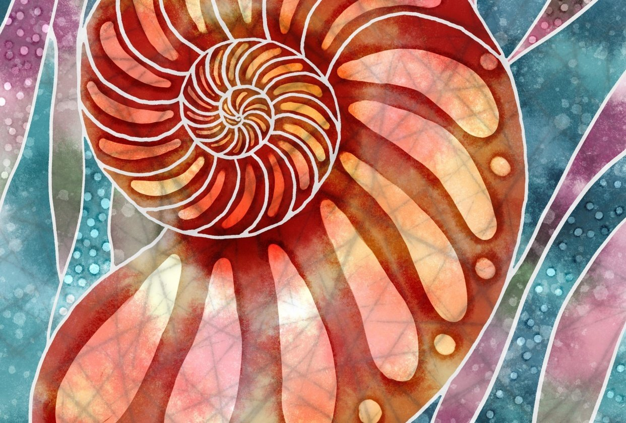 Batik Nautilus - student project