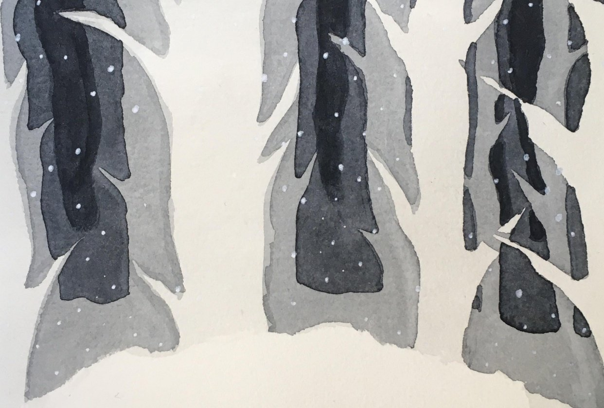 Forest in shades of black - student project