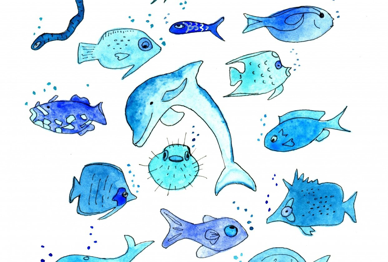 Sealife in Blue - student project
