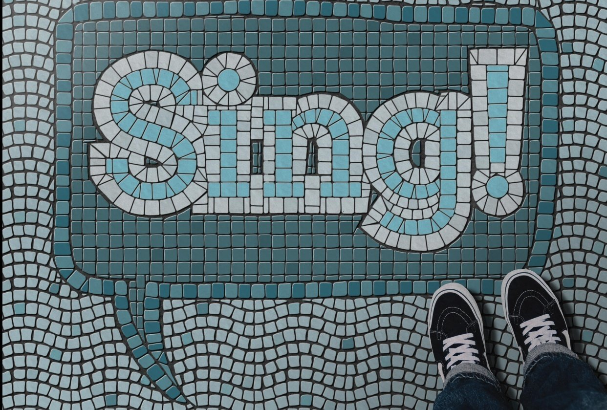 Sing! - student project