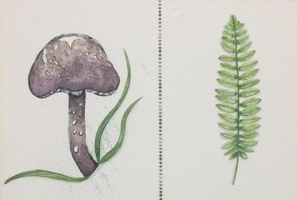 Mushroom n leaf! - student project