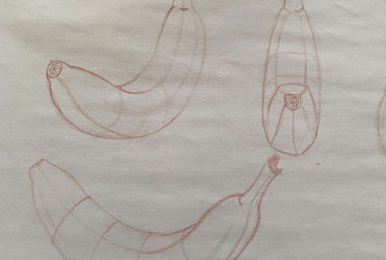 Contours/Drawing with Compelling Contours and Foreshortening - student project