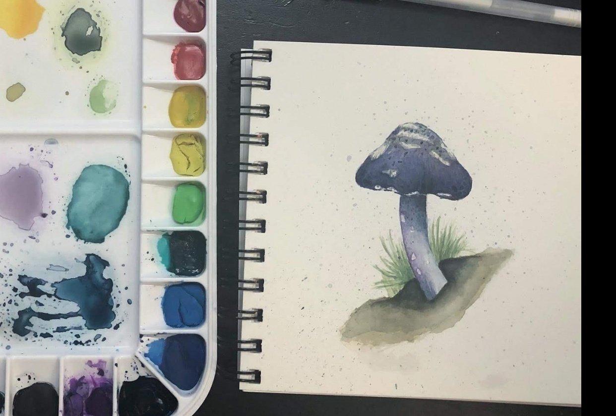 Mushroom & Fern Exercises - student project