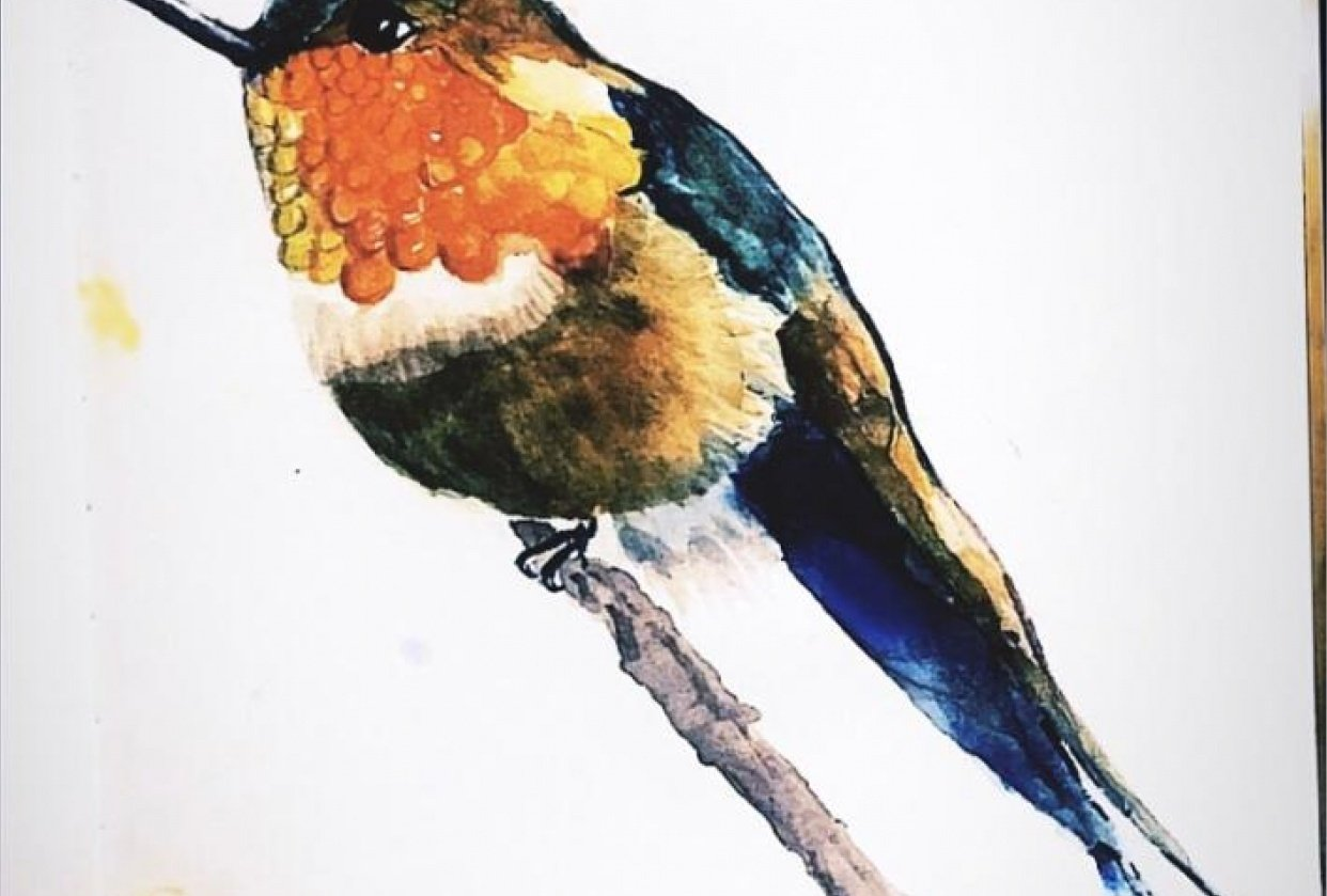 Colourful Bird - student project
