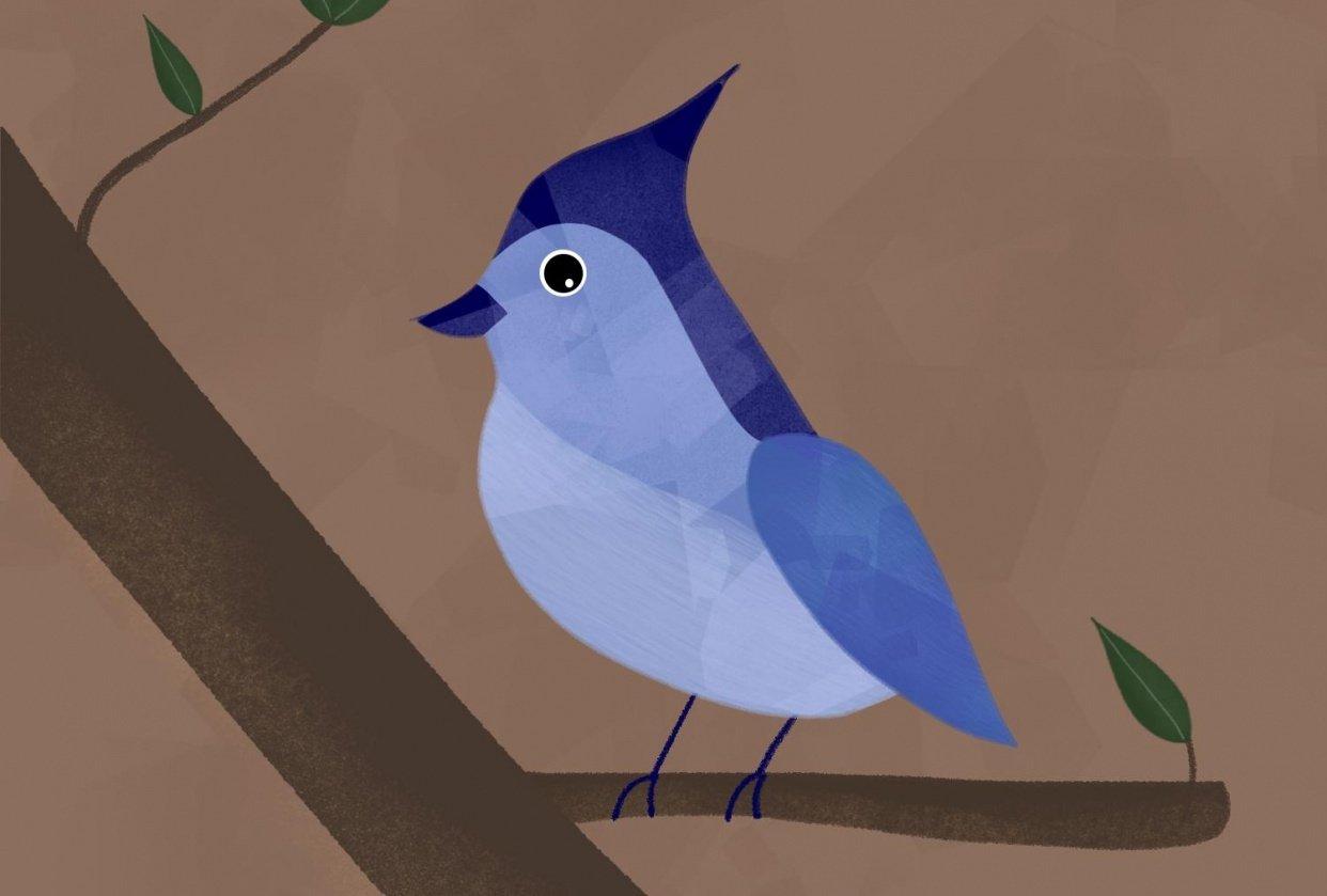 Blue Bird - student project