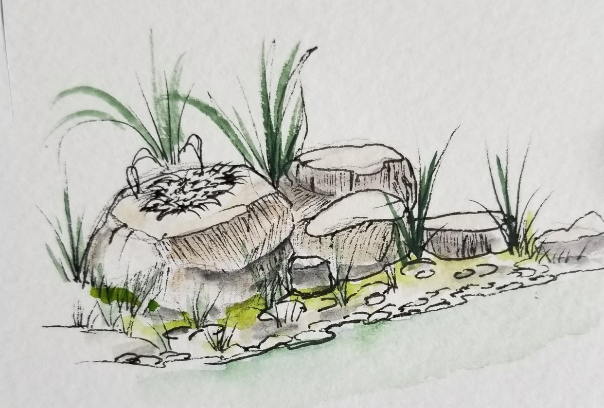 Drawing Rocks - student project