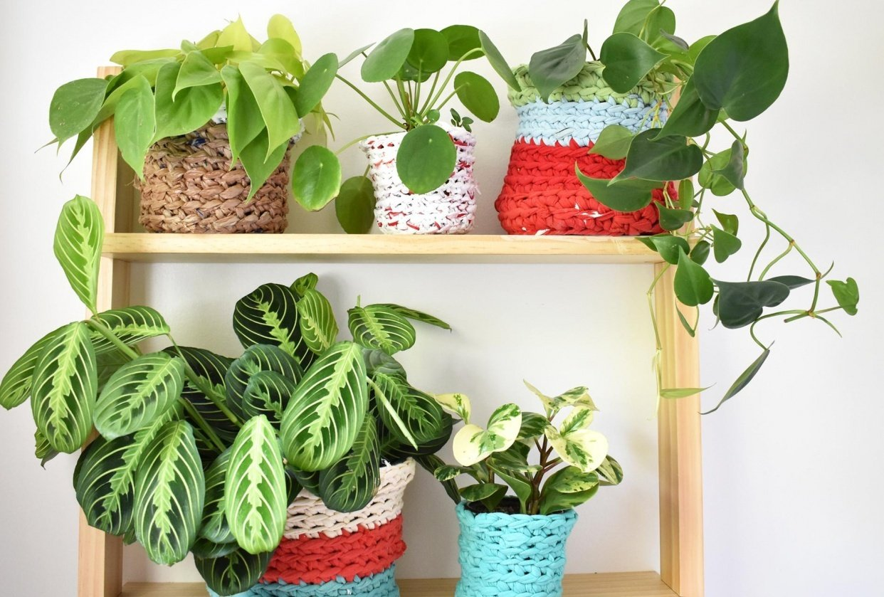 My Plant Pot Covers! - student project