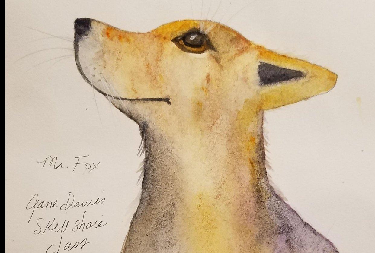 Delightful Mr. Fox - student project