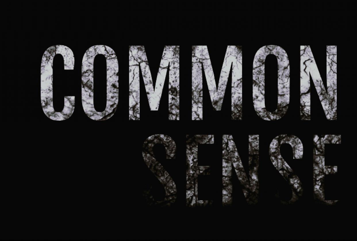 Common sense - student project