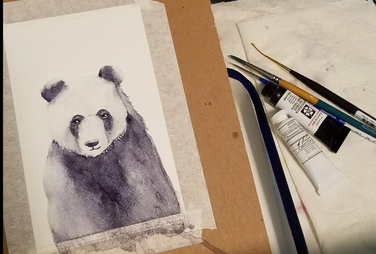 Panda - student project