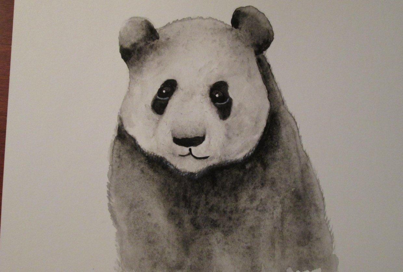 Panda with Jane Davies - student project