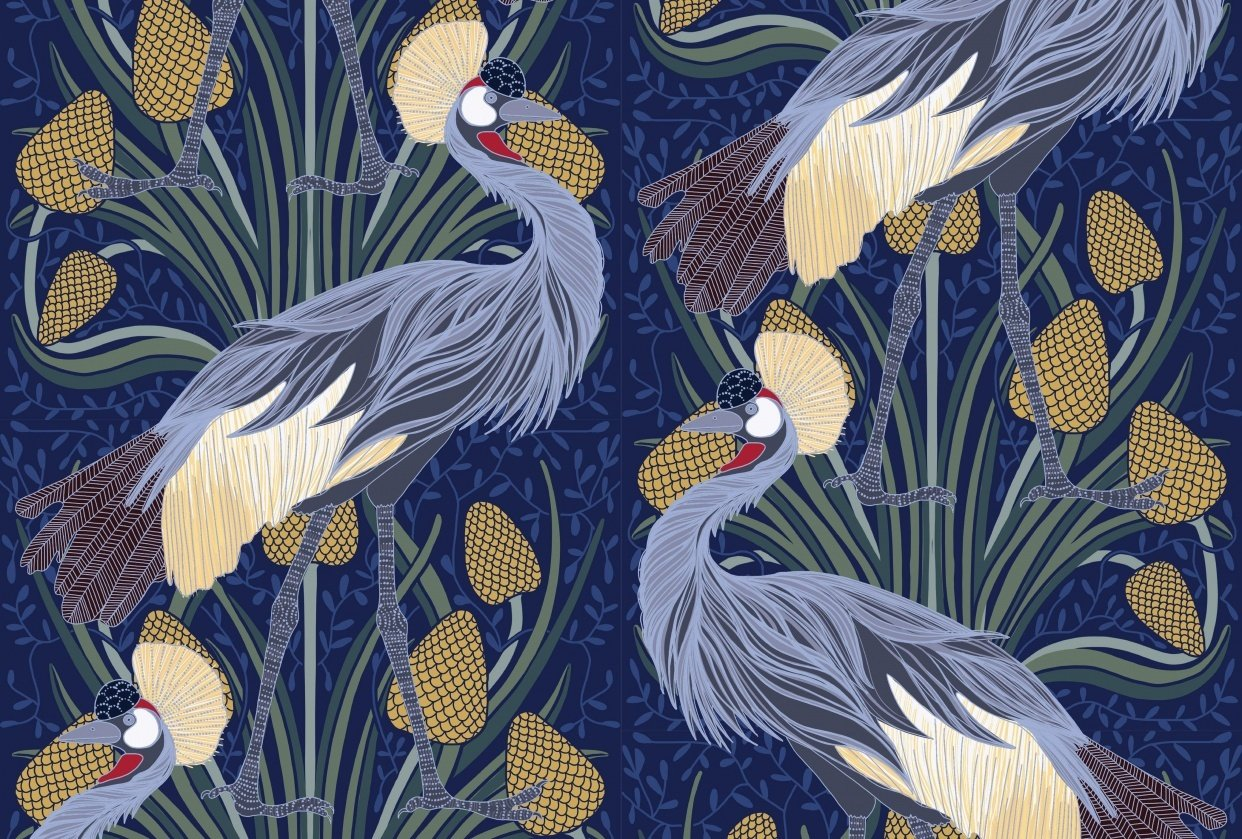 Crowned Cranes - student project