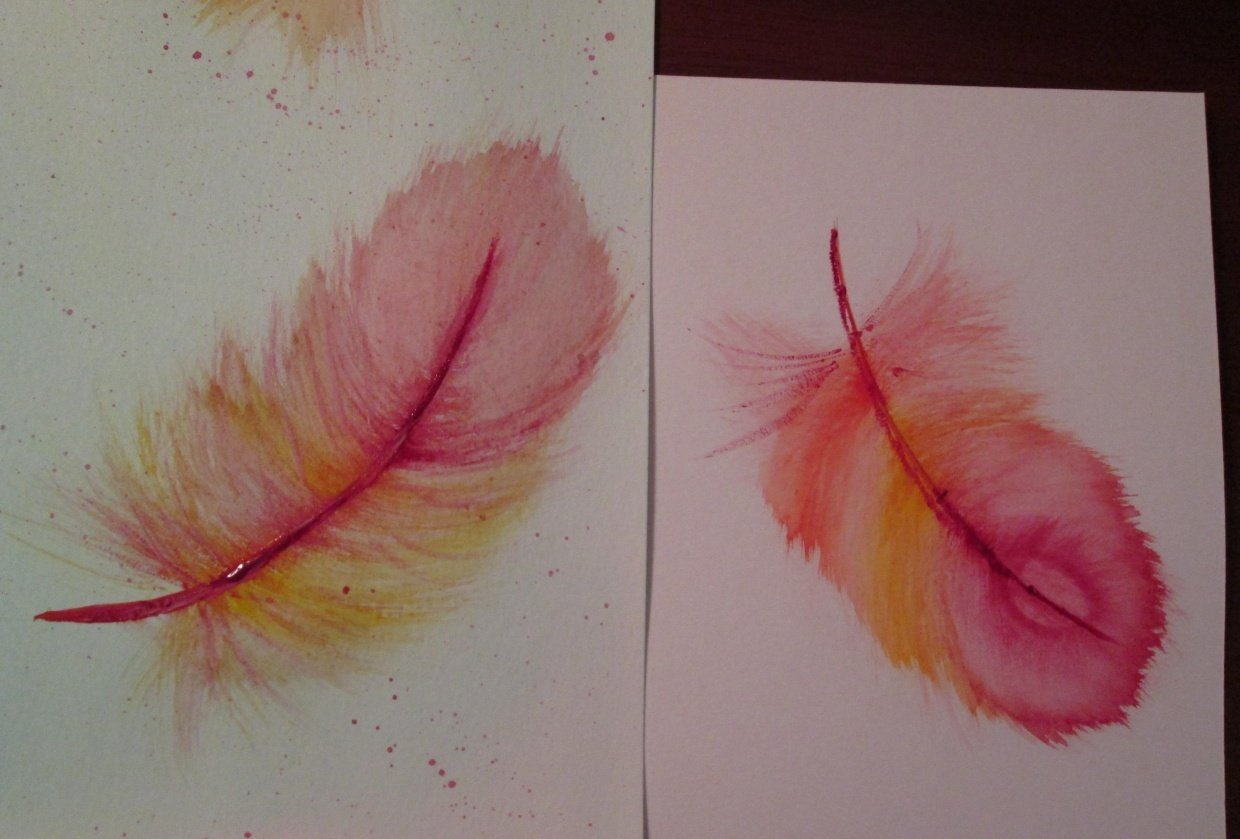 Jane Davies Feathers - student project