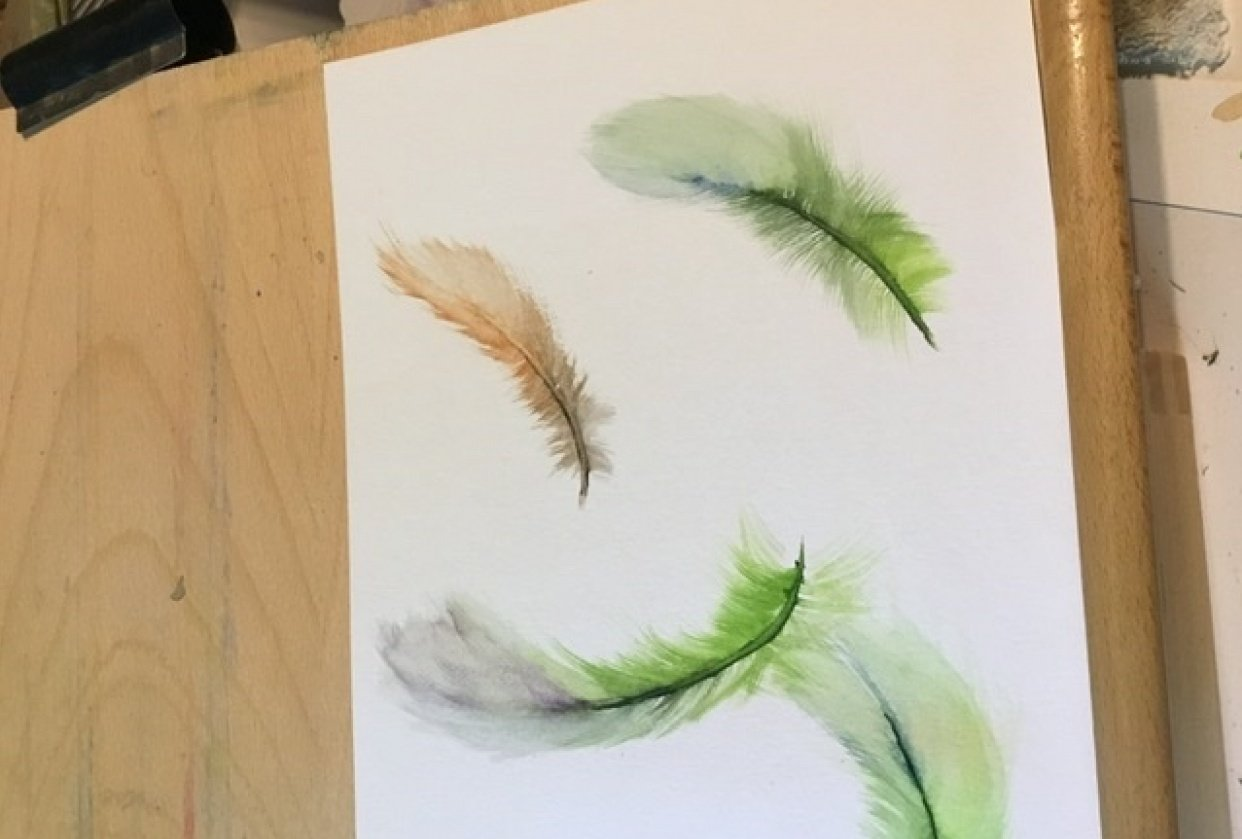 Practice feathers - student project