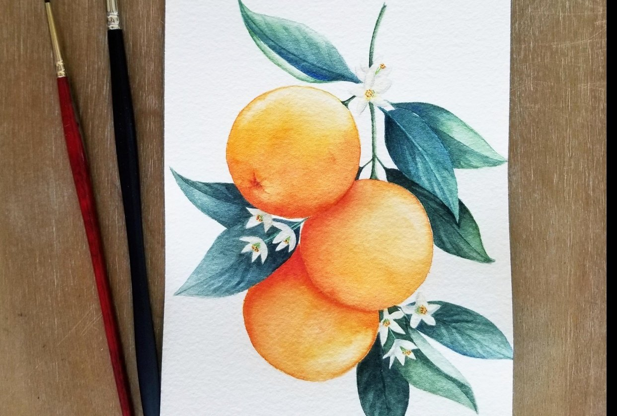 Complementary Oranges - student project