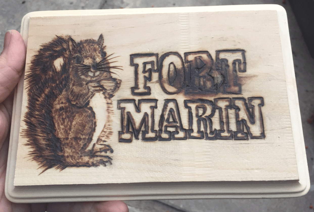 First Woodburning Project - student project