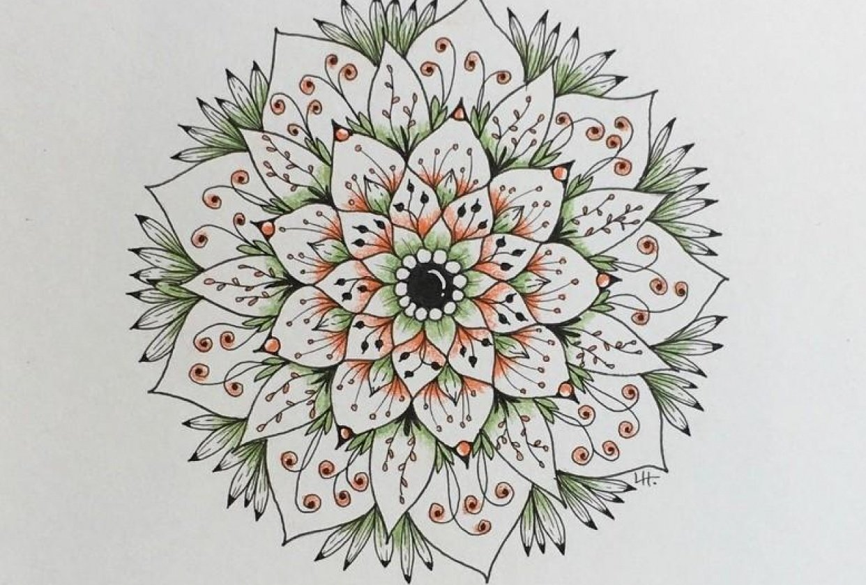 Botanical Mandala - student project